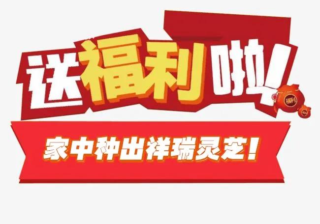 【老顾客专享福利】免费领取赤灵芝菌棒啦!